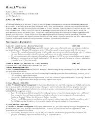 Resume Objective Examples General For Summary Profile With Professional Experience As Director Of Business Development