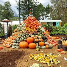 Burts Pumpkin Farm 2015 by 190 Best Pumpkin Festivals Images On Pinterest Fall Decorations