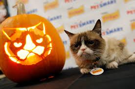 Ray Villafane Pumpkins by Halloween Gets Grumpy Cat Pet Business Magazine October 2014