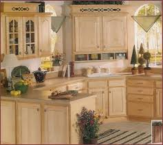 Cabinet Doors Home Depot by Kitchen Cabinet Doors Only Home Depot Home Design Ideas