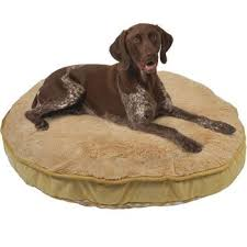 Kirkland Dog Beds by Costco Kirkland Signature Pet Beds Amazing Price For Really