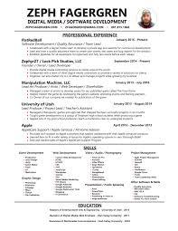 software team leader resume pdf 228215585463 project manager resume objective excel real estate