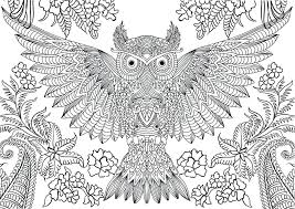 Difficult Animal Coloring Pages For Adults Adult