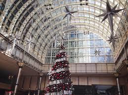 Mythbusters Christmas Tree Last Longer by My Dearest Natalie U0027s Blog