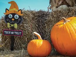 Chatfield Pumpkin Patch Hours by 4 Can U0027t Miss Corn Mazes