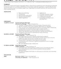 Sample Project Manager Resume Entry Level Example