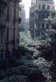 The Green Line Demarcation Zone Beirut Lebanon 1982 485x704