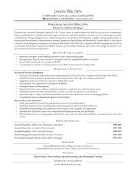 Account Manager Resume Pdf Copy Template