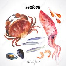 Watercolor illustration of a painting technique Fresh organic food Watercolor set of sea food