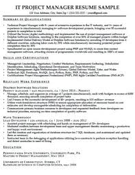 Professional Resume Writers Reviews It Sample Of Solutions
