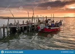 Las Diez Especies Con Mayor Producción Mundial De Pesca De Captura
