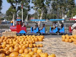 Pumpkin Farm In Palos Hills by A Plus Promotions