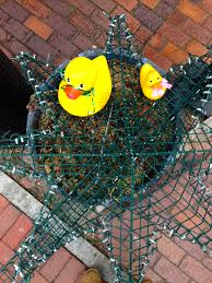 Decorative Lobster Traps Small by Rubber Duck Spends Ten Minutes On The Lobster Trap Christmas Tree