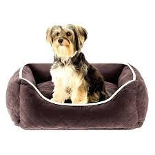 dog beds ball dog beds at trixan pet australia walmart orthopedic