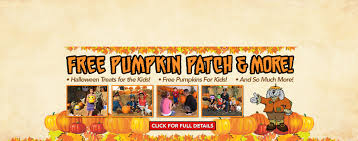 Pumpkin Patch Hospitality San Bernardino Ca by New U0026 Used Ford Dealership Los Angeles Galpin Ford