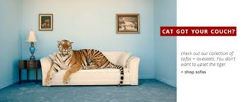 Terrific Cat Got Your Shop Sofas Afw To Joyous Herter Brors