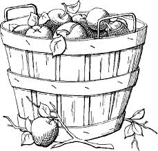 Apple Basket Sketch Of Coloring Pages