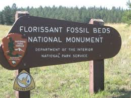 florissant fossil bed visitors may face dramatic fee hikes the