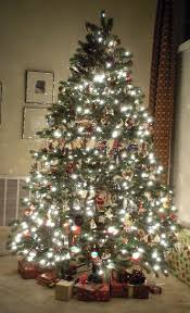 Connect Martha Stewart Pre Lit Christmas Tree by 41 Best Chirstmas Tree Images On Pinterest Christmas Time Merry