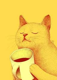 cat coffee cat coffee kitty image 729723 on favim