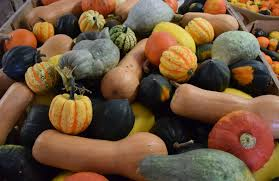 Wisconsin Pumpkin Patches 2015 by Pumpkin Blowout From The Pumpkin Patch To You Blog Festival Foods