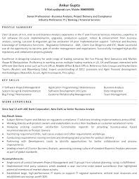 Examples Of Professional Resume Functional Summary Customer Service Sample R Here Are Summaries