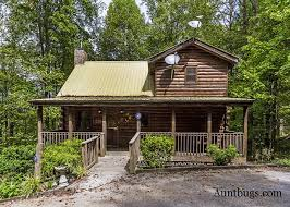 4 Bedroom Cabins In Pigeon Forge by 3 Bedroom Cabins In Pigeon Forge Acorn Cabin Rentals