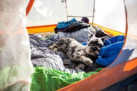 South Boulder Pumpkin Patch by Best Camping Spots Near Boulder Travel Boulder