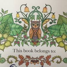 A Bear A Holiday And A Coloring Book