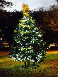 Colorado Springs Christmas Tree Permit 2014 by Friends Of Exall Park U2013 Bpna