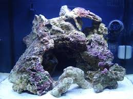 How To Aquascape A Saltwater Reef Aquarium – Aquascaping Pukani ... Aquarium Aquascaping Rocks Aquascape Designs Ideas Project Reef Rock 21 Dry Walt Smith Bulk Supply Review Real Generation 4 Digitalreefs News Info How To Live Purple Live Rock Youtube Updated Clear Pics Newbies Attempt At Aquascaping So Far 3reef Design Aquafishvietcom Bring Back The Wall News Builders Keeping Austin Club Walls For A Tank Callorecom River Suggestion Planted Forum