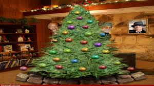 Christmas Tree Has Aphids by Christmas Christmas Tree Bubble Lights String Sienna Mini For