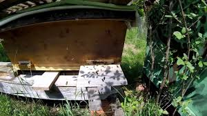 My Kenya Top-Bar Hive 2017 - YouTube Kenyan Top Bar Hive Youtube Wood Pe Hung Share Free Kenyan Top Bar Hive Plans The Peace Bee Farmer Hives Polar Vortex Additional Wterizing Preparing Our Beehive For Winter Making Our Sustainable Life Interior Lawrahetcom Top Bar Hives Pinterest Bkeeping Rources Building A Grovestead Talking With Bees Bkeeping Reusing 1 Yr Old Comb