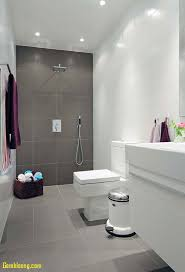 Bathroom: Tiny Bathroom Ideas Fresh Bathroom Small Bathroom Ideas ... Luxury Ideas For Small Bathroom Archauteonluscom Remodel Tiny Designs Pictures Refer To Bathrooms Big Design Hgtv Bold Decor 10 Stylish For Spaces 2019 How Make A Look Bigger Tips And Tile Design 44 Incredible Tile And Solutions In Our Cape Shower Colors Tiles Tub 25 Photo Gallery Household
