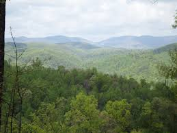 Christmas Tree Farm Packages In Boone Nc by Leatherwood Mountains A Premier Nc Mountain Resort Real Estate