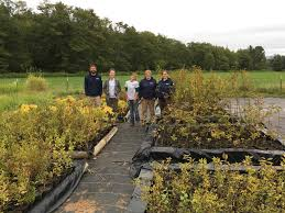 Native Plant Nursery - Skagit Fisheries Enhancement Group Townsend Barn Nursery Poulshot Devizes Home Facebook Big Sky Broker Listings 204 Best Rooms Images On Pinterest Ideas Babies Best 25 Pictures Country Barns Beauty The Lily Tennessee Venue Report Things To Do In Tn Near Cades Cove Smokies Posts 773 Succulent Ideas From Chattanooga 13 Fields Of Lilies That Remind You