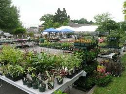 New Jersey gardens Master gardener and garden club plant sales