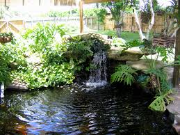 Backyard Design Outdoor With Small Pond - House Design And Planning 67 Cool Backyard Pond Design Ideas Digs Outdoor With Small House And Planning Ergonomic Waterfall Home Garden Landscaping Around A Pond Flow Back To The Ponds And Waterfalls Call For Free Estimate Of Our Back Yard Koi Designs Febbceede Amys Office Large Backyard Ponds Natural Large Wood Dresser No Experience Necessary 9 Steps Tips To Caring The Idea Pinterest Garden Design