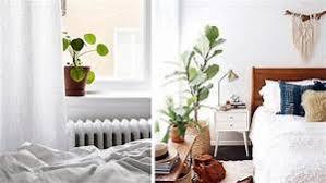plante verte dans une chambre à coucher plante verte pour chambre a coucher les plantes vertes dans la