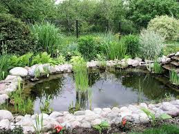 Aesthetic Backyard Ponds — EMERSON Design : How To Build Backyard ... Best 25 Pond Design Ideas On Pinterest Garden Pond Koi Aesthetic Backyard Ponds Emerson Design How To Build Waterfalls Designs Waterfall 2017 Backyards Fascating Images Download Unique Hardscape A Simple Small Koi Fish In Garden For Ponds Youtube Beautiful And Water Ideas That Fish Landscape Raised Exterior Features Fountain