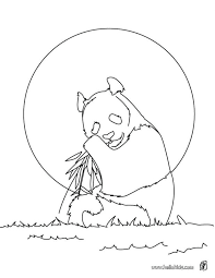 Giant Panda Coloring Page Source Sea Creatures Pages To Print Zoo Animals For Preschoolers Jungle Animal