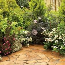Knollwood Garden Center and Landscaping Nursery Trees and Shrubs