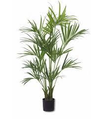 kunstpalme kaufen easyplants easyplants