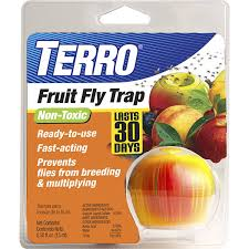 Amazon.com : TERRO Fruit Fly Trap T2500 : Home Pest Control Traps ... 7 Tips For Fabulous Backyard Parties Party Time And 100 Flies In Get Rid Of Best 25 How To Control In Your Home Yard Yellow Fly Identify Of Plants That Repel Flies Ideas On Pinterest Bug Ants Mice Spiders Longlegged Beyond Deer Fly Control Pest Chemicals 8008777290 A Us Flag Flew Iraq Now The Backyard Jim Jar O Backyard Chickens To Kill Mosquitoes Mosquito Treatment Picture On And Fascating