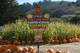 Half Moon Bay Pumpkin Patches 2015 by Family Fun Citygirlcountrychick