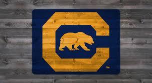 California Berkeley C Bear Tailgater Stencil Kit