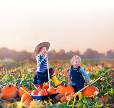 Westbury Gardens Halloween 2017 by Top 10 Fall Family Activities On Long Island Heritage Farm
