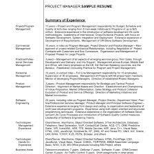 Resume Summary Example Cute Resumes Examples Adout Best Of Statement