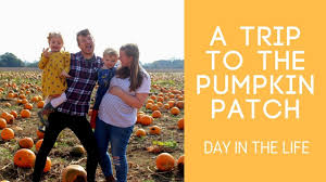 Kent Farms Pumpkin Patch by A Trip To The Pumpkin Patch Day In The Life Youtube