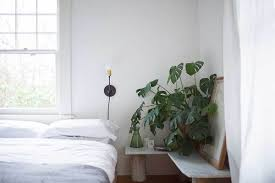 planty of friends trend green interior alles gold was
